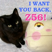 I want you back, Z56!